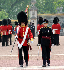 Img91565e (veryamateurish) Tags: london buckinghampalace changingoftheguard royalguards welshguards arrc royallogisticscorps 23may2008