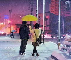 Snowy Wednesday Night in Hirosaki.  Glenn Waters.Japan.  Over 26,000 visits to this photo. (Glenn Waters in Japan.) Tags: winter urban snow color colour love japan night umbrella 50mm nikon couple f14 14 sigma noflash yuki aomori handheld  sweethearts hirosaki   japon   streetshot       abigfave anawesomeshot d700 colourartaward nikond700  glennwaters sigma50mmf14exdghsm snowywednesdaynight 55march25th 61march7th 51may13th
