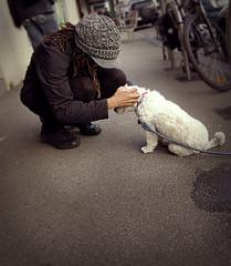 Petting (adept images) Tags: street urban woman dog pet cute girl animal dreadlocks puppy fur furry pavement pat melbourne streetscene brunswick victoria sidewalk leash pup tied petting scratch dreads footpath crouch crouching patting winterhat sydneyroad sydneyrd leashed