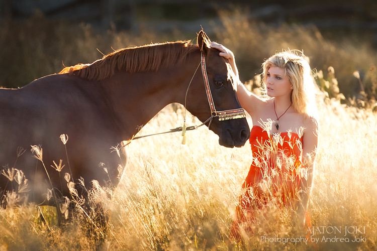 Shani and the arabian horse in australian sunlight