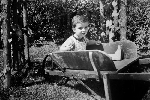In Grampa's Wheelbarrow