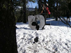 Emergency survival gear hanging from a tree