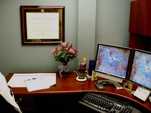 my office, with flowers