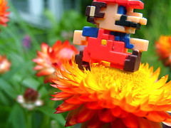 super mario (bunbunlife) Tags: red flower macro yellow garden photos bokeh no nintendo ds 8 super mario pixel nes gameboy yoshi bit snes smb limits wii