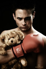 The Boxer (scaamanho) Tags: bear light toy oso bravo teddy boxer globes peluche guantes onblack boxeo boxeador firstquality strobist aplusphoto scaamanho