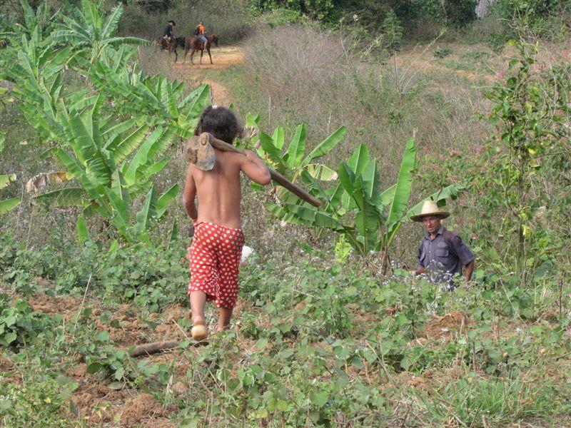 Cuba: fotos del acontecer diario - Página 6 2604175178_feac85191d_o
