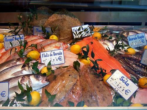 Lux fish