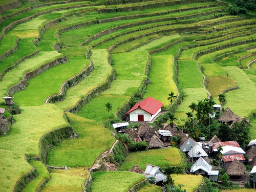 Batad's village