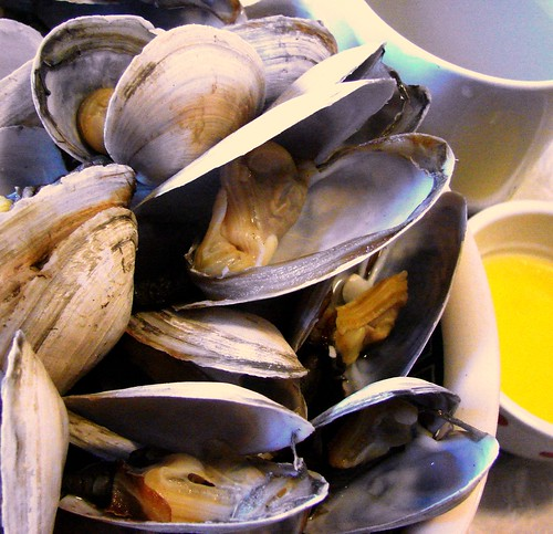 New England soft-shelled clams - Steamers - are one of my all-time ...