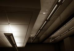 (fusion-of-horizons) Tags: architecture campus de photography photo university fotografie photos cincinnati uc arhitectura steger arhitectură