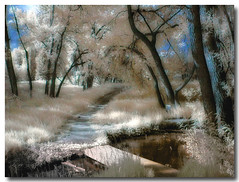 Our side of the river... (Colorado Scenics) Tags: landscape rockies scenic coloradosprings infrared rockymountains frontrange digitalinfrared hoyar72infraredfilter olympusc2020z elpasocounty infraredlandscape aplusphoto sondermannpark alemdagqualityonlyclub damniwishidtakenthat alemdaggoldenaward flickrlovers hourofthesoul p1010026e3