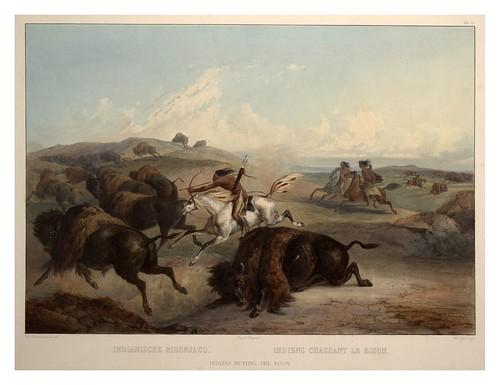 0064r- Indios cazando Bisontes