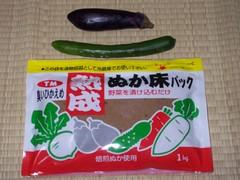 Japanese pickles kit