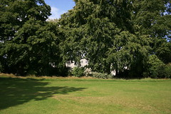Gardens (Alir147) Tags: hospital scotland hall stage wheelchair memories paintings medical photographs forgotten nhs historical nurse exploration asylum derelict wards mentalhospital lunaticasylum abandonedhospital abandonedmentalhospital derelicthospital corrdior patientartwork