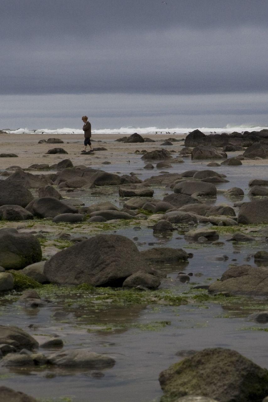 Yachats Beach Comber