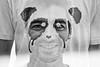 Leafar is a panda (janbat) Tags: bw nikon exposure panda organics sweden 85mm nb multiple d200 nophotoshop nikkor f18 teeshirt stockolm firsttest raphaël suède lafraise leafar jbaudebert