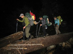 Late night log crossing
