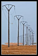 Espejismo (jemonbe) Tags: cables lineas deltadelebro totalphoto paisajesdepueblosycampos jemonbe