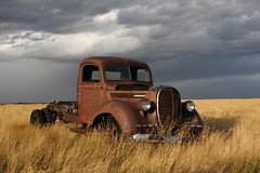 Rusty old 1939 Ford truck (dave_7) Tags: old sky cloud canada storm ford field rain rural truck canon rust decay farm wheat grain rusty explore alberta 39 clounds 1939 digest prarie fcar 40d explore31 colorphotoaward