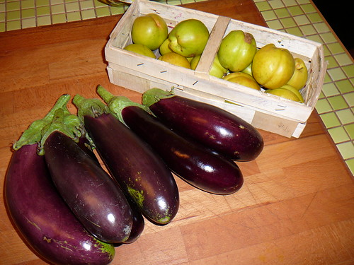 Auberginen- und Nektarinenernte
