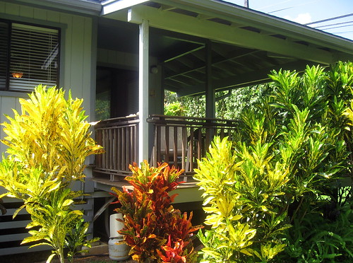 Blue Anini Cottage