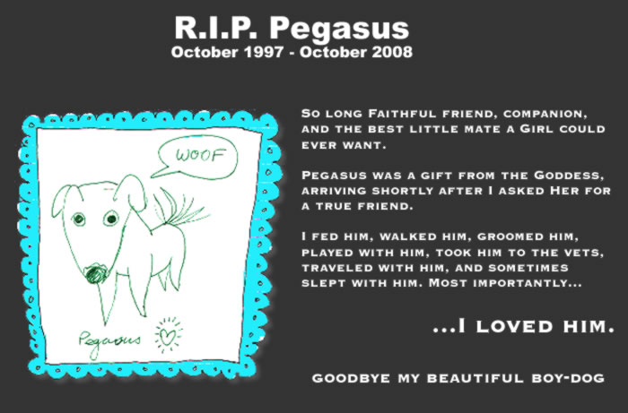 I drew this little cartoon  in the late 90s, when Pegasus was still mostly a pup - I WILL MISS HIM.