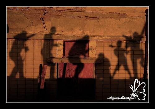 Kuwait Free Photographers