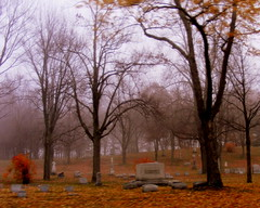 Grave yard fog (**Ms Judi**) Tags: autumn trees red sky orange brown black blur tree fall colors grave graveyard leaves yellow fog stone wisconsin yard blurry day stones branches cemetary tomb foggy ground graves creepy bones paths lovely grounds marinette errie foggyday treebones beautiul msjudi marinettewisconsin judistevenson
