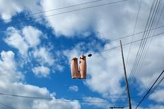 pantalons dans l'air (designwallah) Tags: wire bleu blue ruelle blanc clouds colour ruesthubert white alley sky line laneway canada designwallah ccfrancismariani montréal montreal quebec québec number