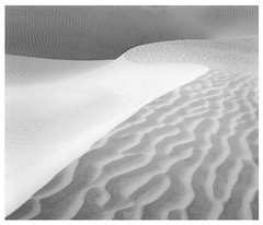 Dunescape II (ART SRISAK | PHOTOGRAPHY) Tags: bw mamiya film mediumformat desert please country minimal colorless monart 123bw autaut rb67pros filmforward artsrisak