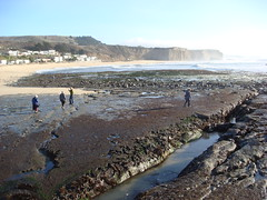 MartinsBeach_2007-013 (Martins Beach, California, United States) Photo