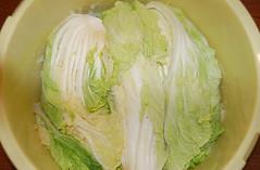 08-11白菜3