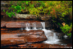 Cascades on McCarrs Creek, Ku-ring-gai Chase National Park, NSW, Australia (ILYA GENKIN / GENKIN.ORG) Tags: park creek forest waterfall australia falls national cascades nsw chase kuringgai mccarrs