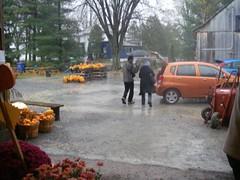 voiture et citrouilles pluie