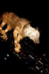 Transition 5 (Karen_O'D) Tags: street art liverpool lantern transition merseyside capitalofculture liverpool08