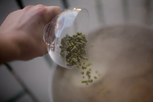 adding the second round of hops to the wort