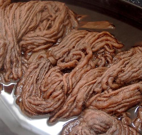 walnut dyebath