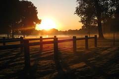 Sunrise (eworm) Tags: morning sun sunrise dew groningen zon dauw ochtend tegenlicht fietsenstalling zonsopkomst hoornseplas