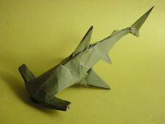 Origami Hammerhead Shark Tags shark origami
