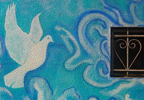 Tại sao chim bồ câu lại được chọn làm biểu tượng cho tình yêu?