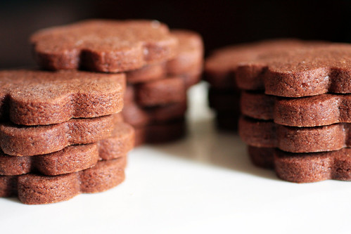 brownie roll-out cookies | smitten kitchen