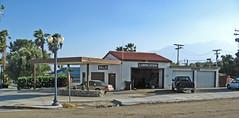 11875 Palm Drive (1591)