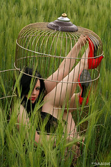 Come into my little world (kiara_black) Tags: summer green field canon germany photography gold europe hessen may cage sensual vogue gras redshoes outsie rebelxti eos400d diamondclassphotographer