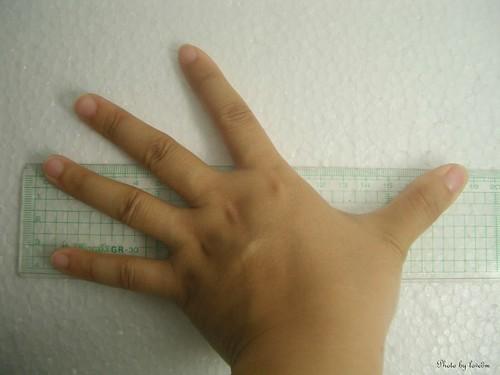 hand 005-1