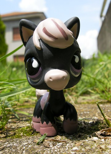LPS BLACK HORSE - PONY # 523 by unaerica.