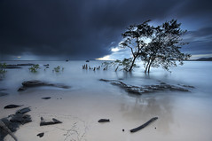 Point du jour | Night break (Erick Loitiere) Tags: cloud beach rain sunrise landscape dawn bravo bourda cayenne shore erick paysage guyane 973 frenchguiana canonef1740mmf4l guyanefranaise bratanesque 97300 loitiere erickloitire singhrayreversedgnd thetowerofpriapus ricoliki