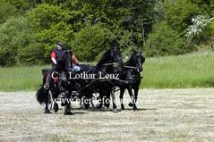 lz190504(82) (Lothar Lenz) Tags: deutschland friese pilcher 56812dohr