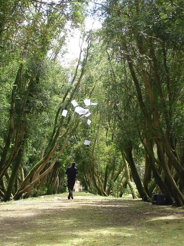Paseo dos Buxos - Isla San Simón