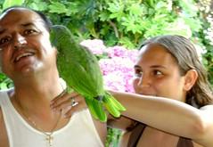 """Friends with Charlie"" (a) (Madonovan) Tags: family summer pets birds jessica july patio charlie parrots evenings myspecialkenny rockyromero addtoslideshow"