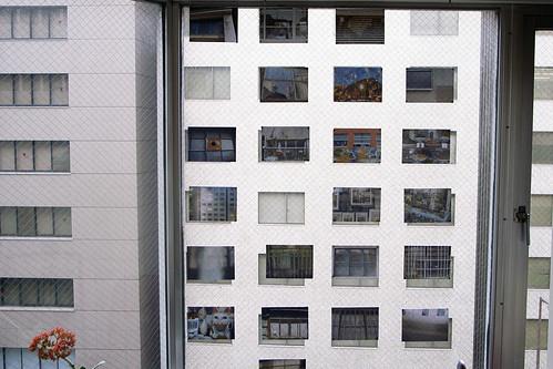 WINDOWS exhibition@ gallery maggot